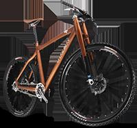 Mountain bike kerékpár